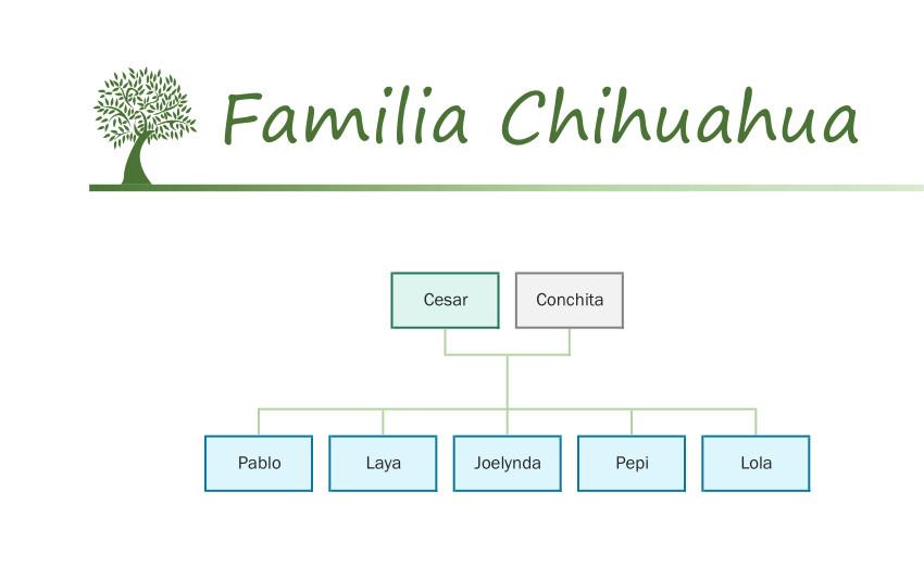 Familia Chihuahua catálogo Sylvanian Families