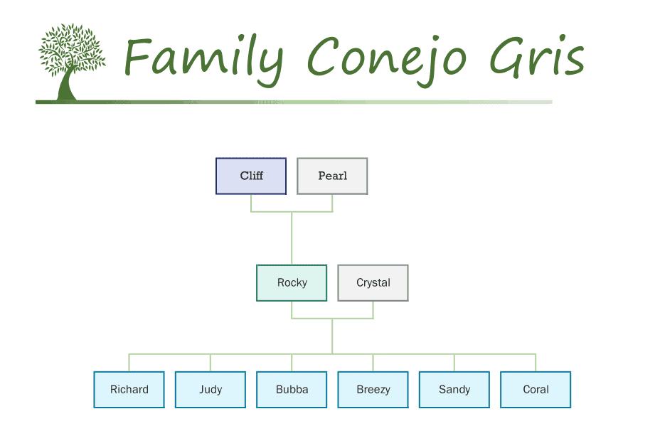 Familia Conejo Gris catálogo Sylvanian Families