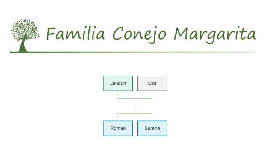 Familia Conejo Margarita catálogo Sylvanian Families