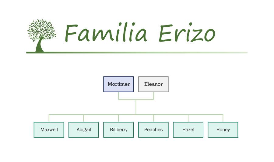 Familia Erizo Sylvanian