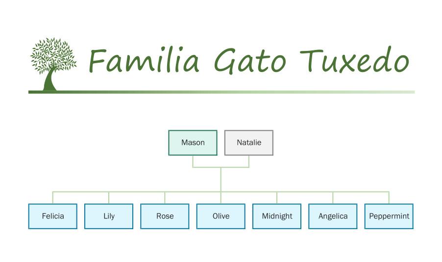 Familia Gato Tuxedo catálogo Sylvanian Families