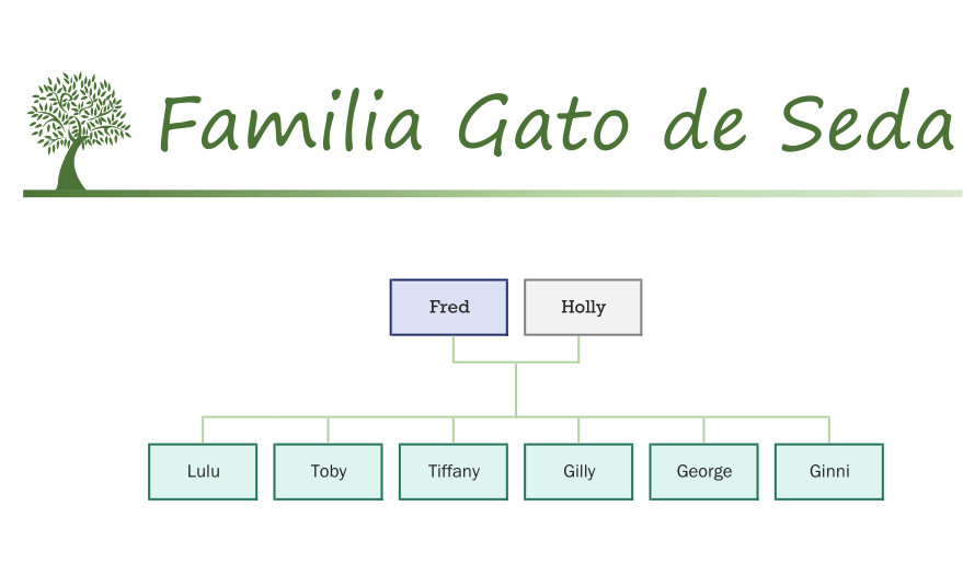 Familia Gato de Seda