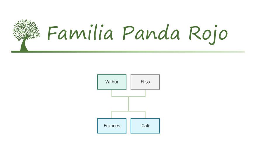 Familia Panda Rojo Sylvanian