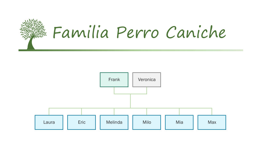 Familia Perro Caniche catálogo Sylvanian